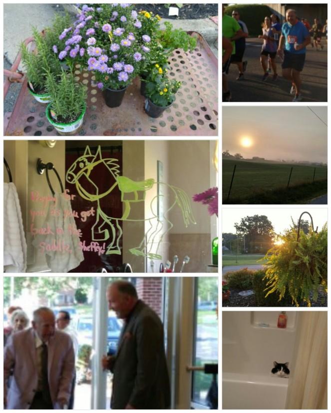 160906_124932_collage-1.jpg