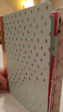 I got this binder at Target Clearance for $1.50.