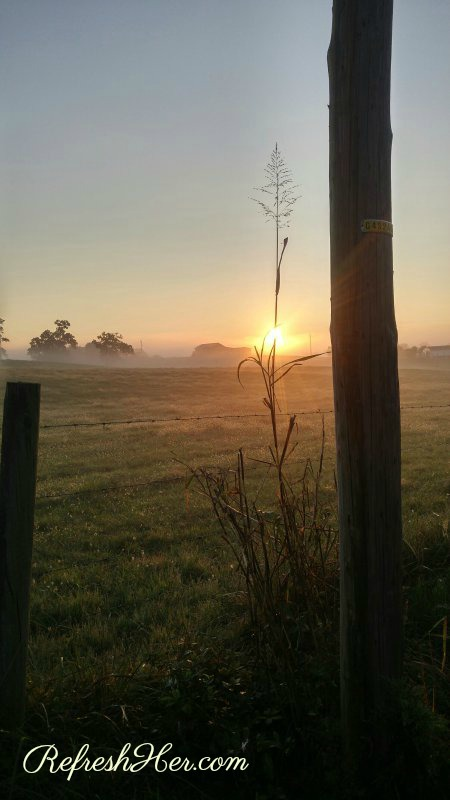 sunrise at home